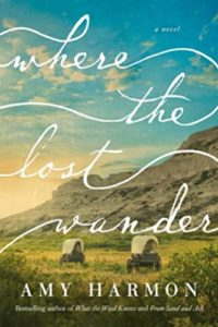 Where the Lost Wander by Amy Harmon, a Book Review by @BarbaraDelinsky #WhereTheLostWander #BookReview #books